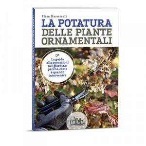 379-8-potatura-delle-piante-ornamentalicop-3d-rid_orig