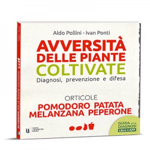POMODORO PATATA MELANZANA PEPERONE Avversità delle piante coltivate